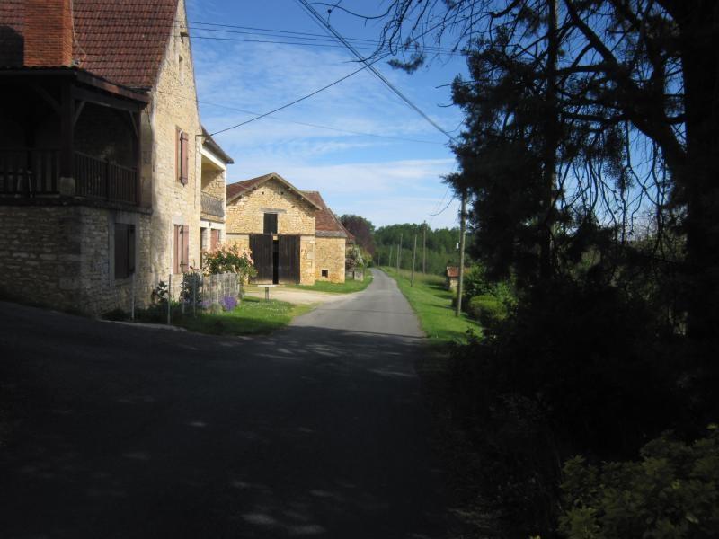 Vente maison / villa Veyrines de domme 300000€ - Photo 7