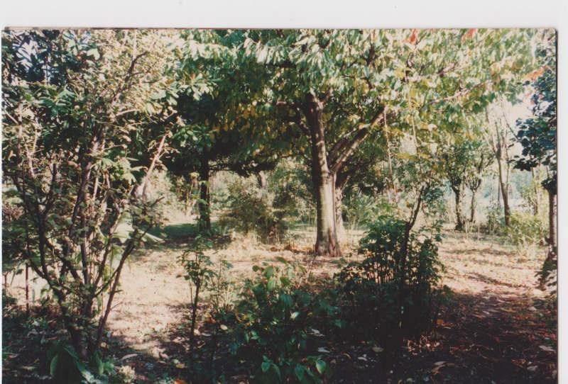 Sale site Montmagny 175000€ - Picture 1