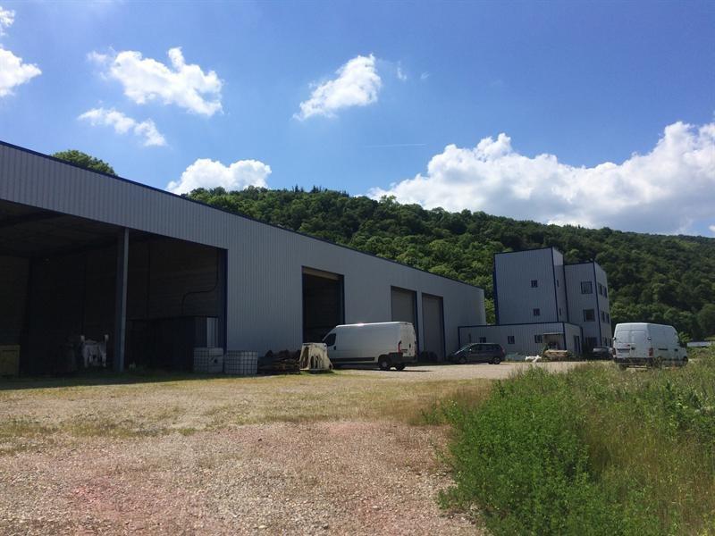 Vente Local d'activités / Entrepôt Saint-Romain-en-Gal 0