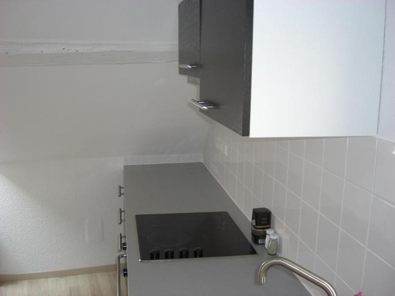 Location vacances appartement Strasbourg 550€ - Photo 13