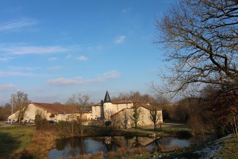 Vente de prestige maison / villa St junien 1000000€ - Photo 1