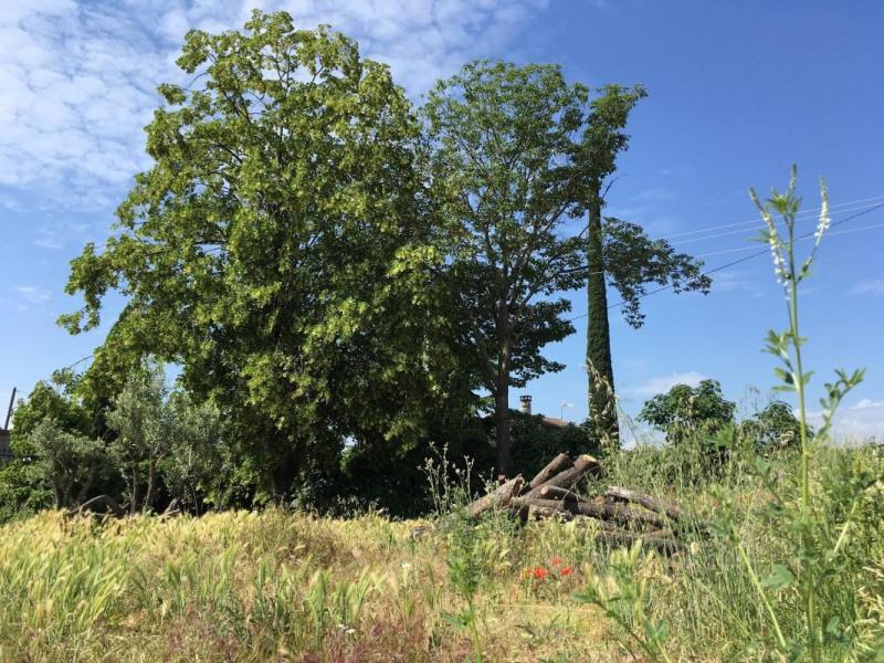 Vente terrain Pont-de-l'isère 75000€ - Photo 1