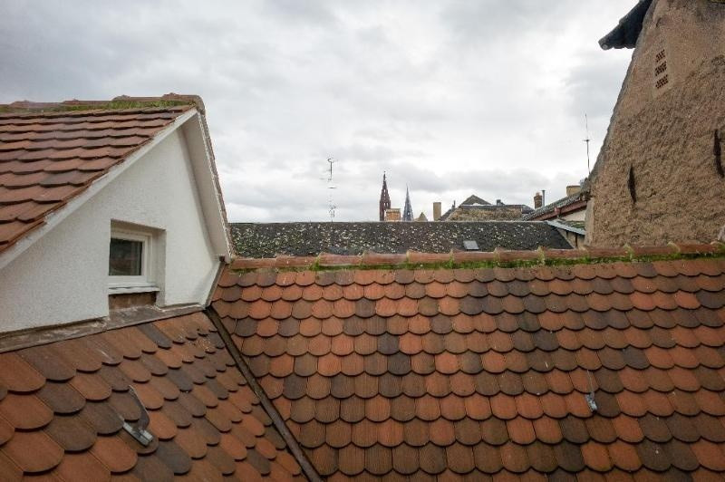 Location vacances appartement Strasbourg 910€ - Photo 16