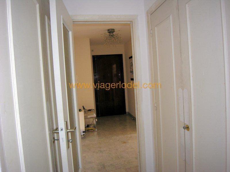 Vendita nell' vitalizio di vita appartamento Antibes 62000€ - Fotografia 11