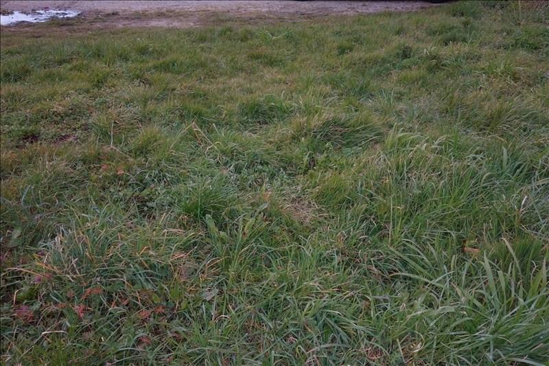 Vente terrain Ste flaive des loups 28000€ - Photo 1