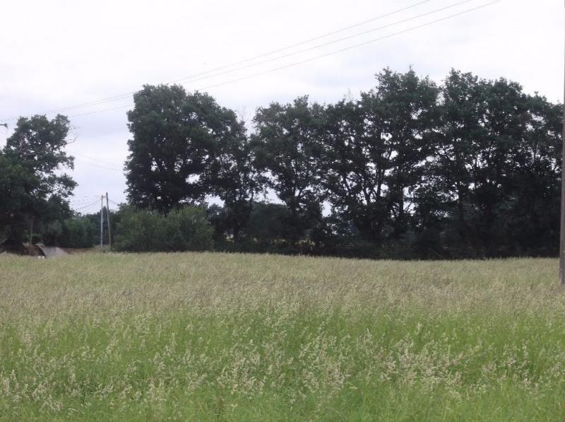 Vente terrain Aire sur l adour 19000€ - Photo 3