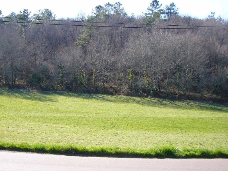 Vente terrain St pierre de cole 25000€ - Photo 1