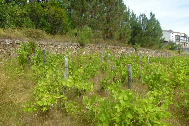 Vente terrain Ucel 99000€ - Photo 2