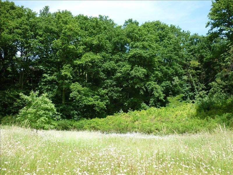 Vente terrain Mortagne au perche 56000€ - Photo 3