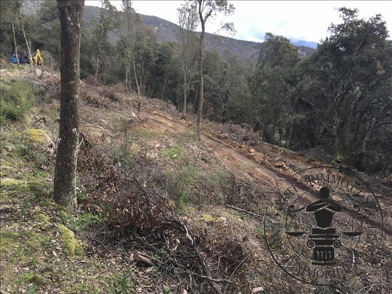 Vente terrain Coggia 69300€ - Photo 2