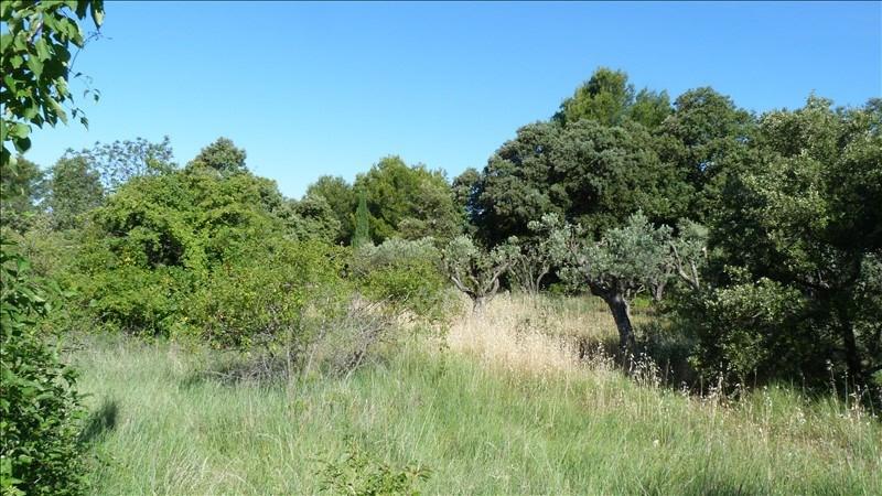 Verkoop  stukken grond Vacqueyras 132500€ - Foto 1