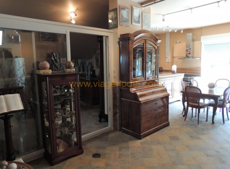 Viager maison / villa Montalieu vercieu 450000€ - Photo 3