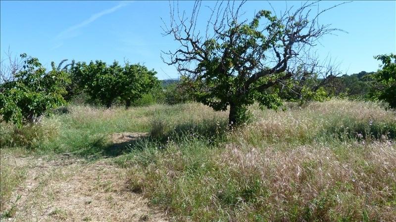 Vente terrain Malemort du comtat 139000€ - Photo 2