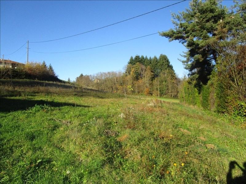 Vente terrain Chasselay 77000€ - Photo 3