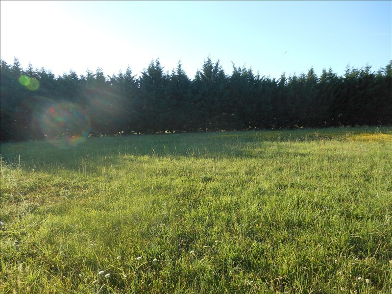 Vente terrain Albi 60000€ - Photo 1