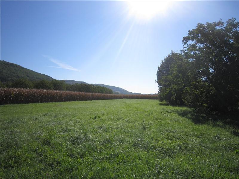 Vente terrain Castels 39700€ - Photo 2