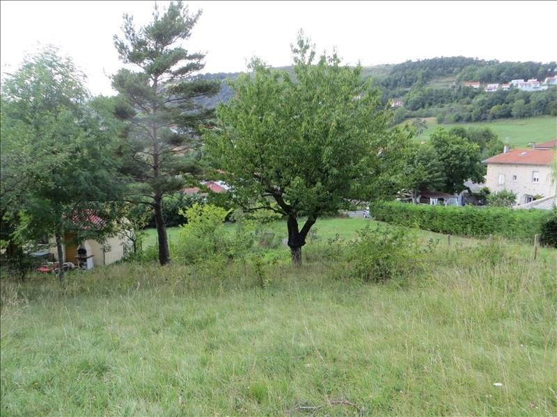 Vente terrain Coubon 54 000€ - Photo 3