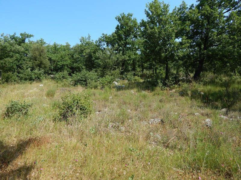 Vente terrain Régusse 92000€ - Photo 3