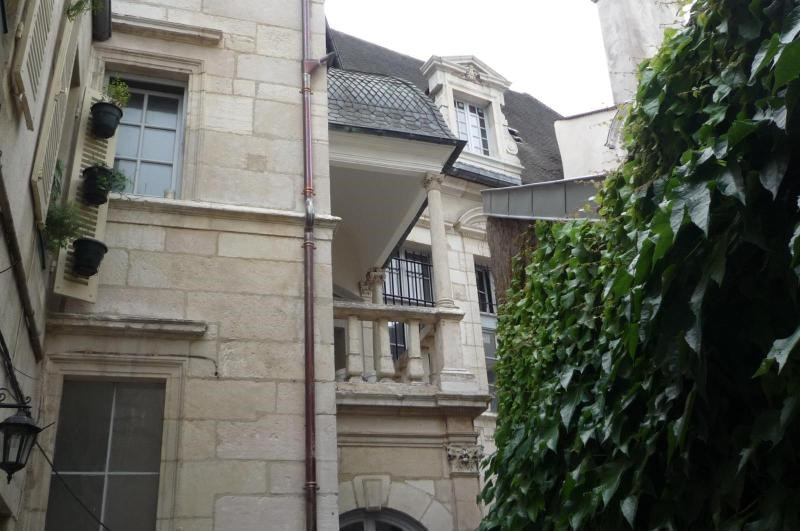 Location appartement Dijon 497€ CC - Photo 1