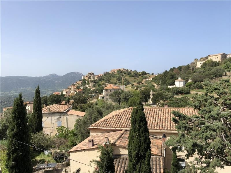 Vente maison / villa Corbara 290000€ - Photo 1