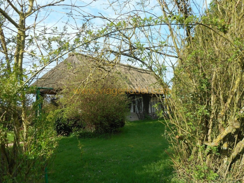 Life annuity house / villa Martainville 190800€ - Picture 25