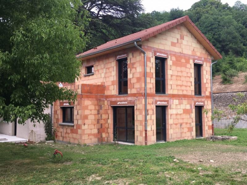 Investment property house / villa Cremieu 420000€ - Picture 13
