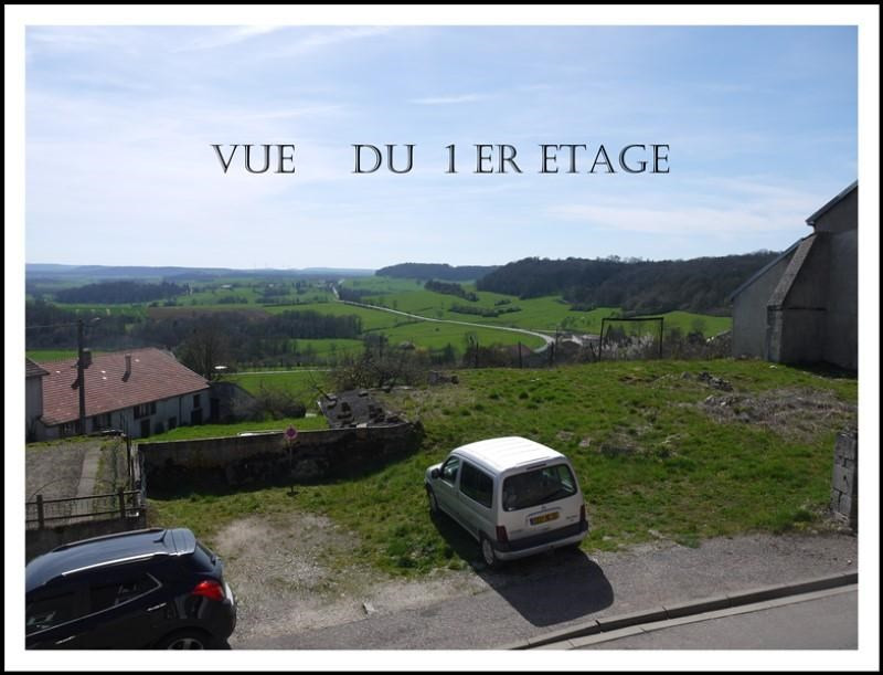 Sale house / villa Montigny le roi 17000€ - Picture 3