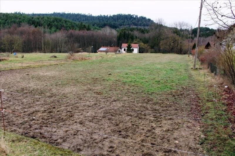 Vente terrain Raon l etape 49000€ - Photo 1