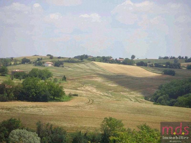 Vente de prestige maison / villa Verfeil secteur 798000€ - Photo 18
