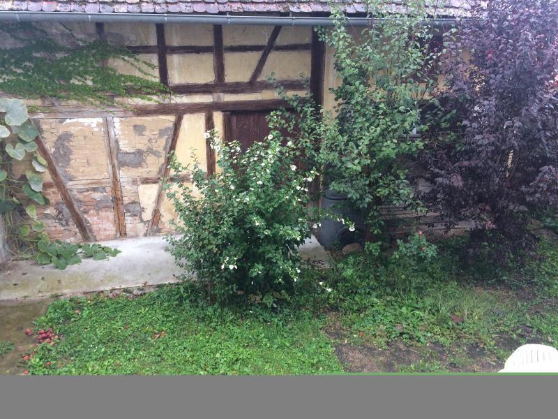 Vendita casa Truchtersheim 312000€ - Fotografia 4