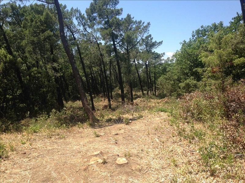 Verkoop  stukken grond Bollene 44000€ - Foto 3