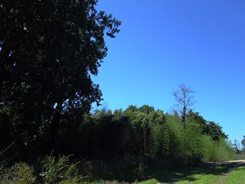 Vente terrain Angresse 125000€ - Photo 1