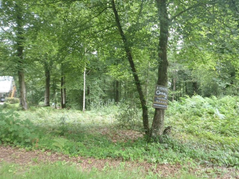 Vendita terreno St gatien des bois 149000€ - Fotografia 3