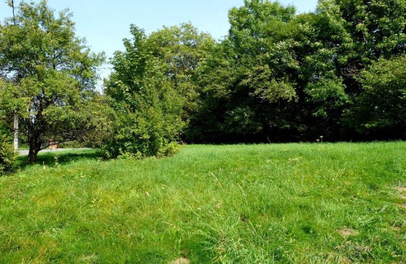 Vente terrain La roche-sur-foron 139000€ - Photo 1