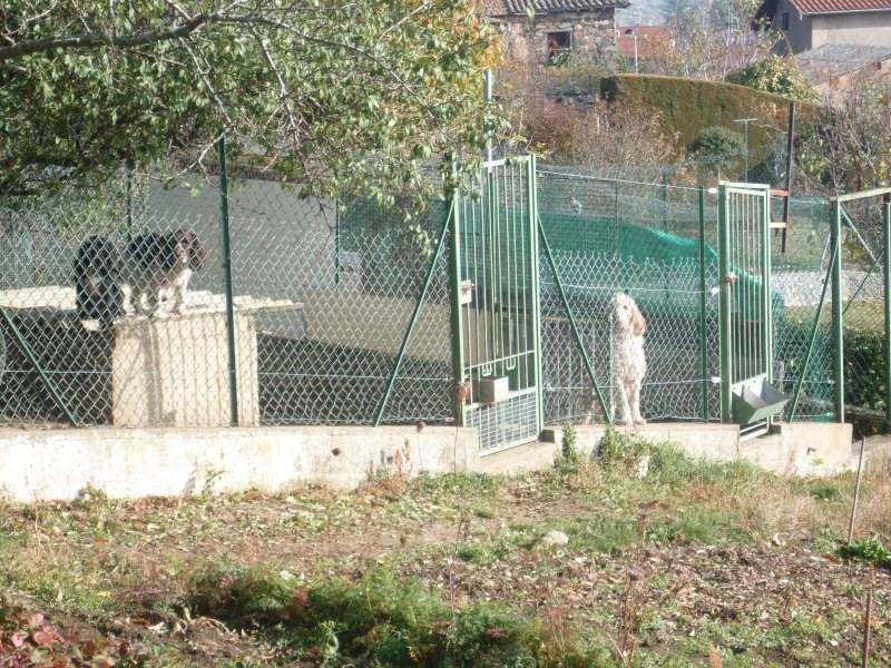 Vente maison / villa L arbresle 290000€ - Photo 6
