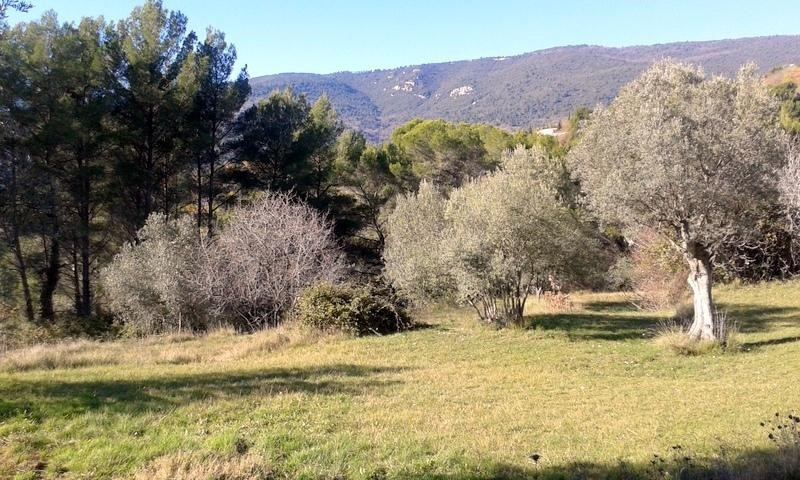 Sale site Fayence 222000€ - Picture 3