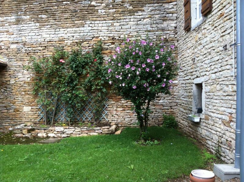 Vente maison / villa Tournus 297000€ - Photo 8