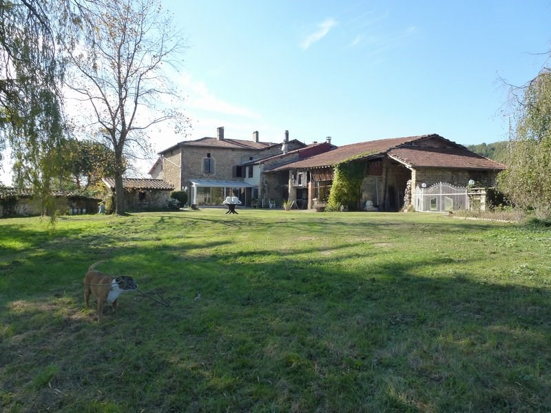 Vente maison / villa Chateauneuf de galaure 290000€ - Photo 2