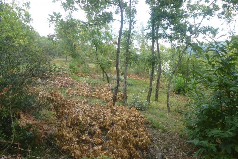 Vente terrain Vesseaux 58000€ - Photo 1