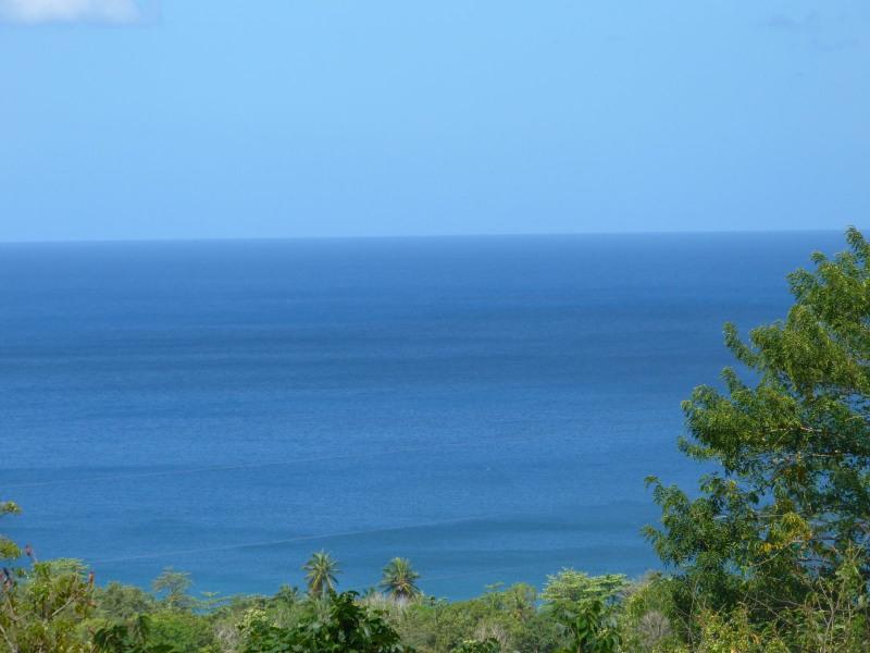 Vente terrain Pointe noire 292000€ - Photo 2