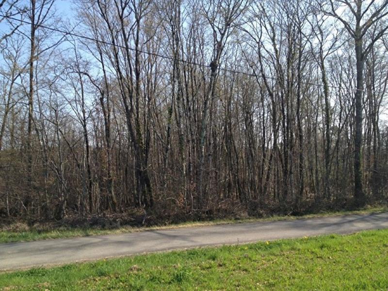 Vente terrain La chapelle gonaguet 28000€ - Photo 1