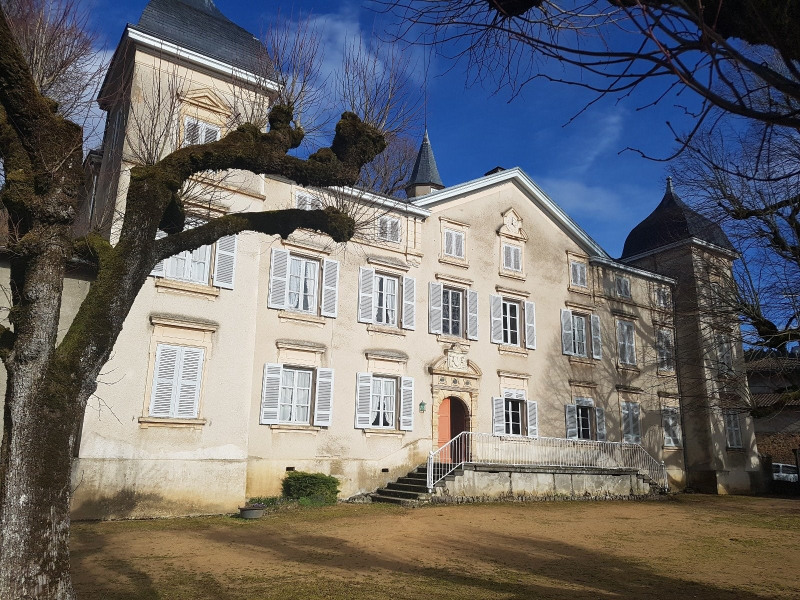 Deluxe sale house / villa St laurent de chamousset 790 000€ - Picture 3