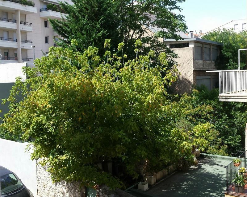 Location appartement Marseille 8ème 890€ CC - Photo 1