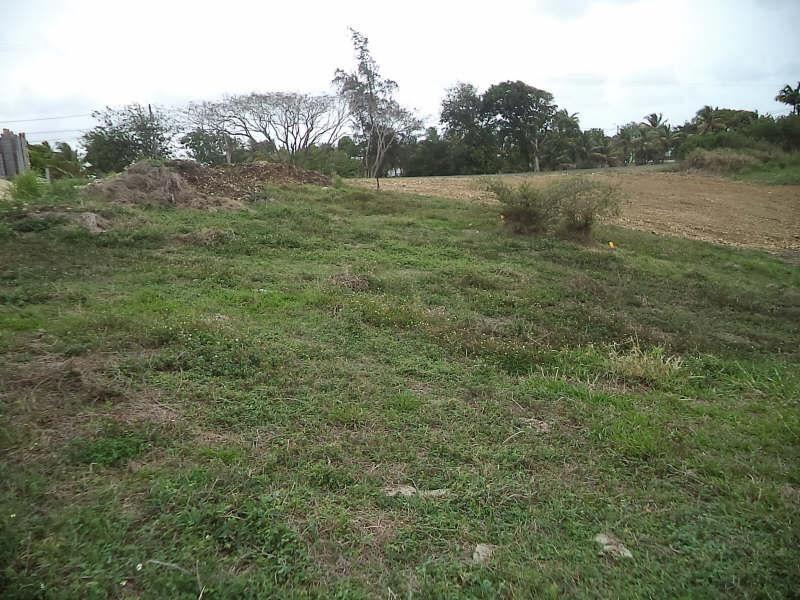 Vente terrain Ste anne 324000€ - Photo 2