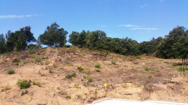 Vente terrain Cauro 135000€ - Photo 8