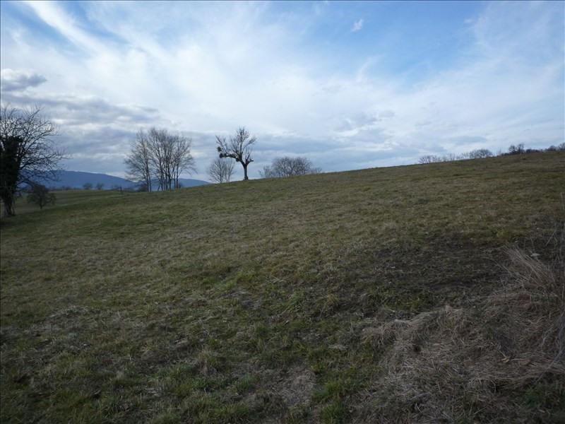 Venta  terreno Boussy 160000€ - Fotografía 1