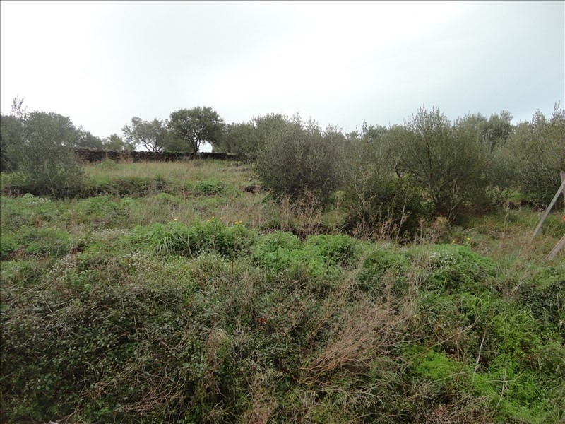 Vente terrain Collioure 255 000€ - Photo 2