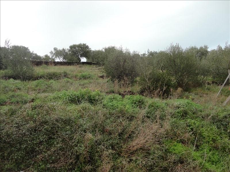 Venta  terreno Collioure 255000€ - Fotografía 2