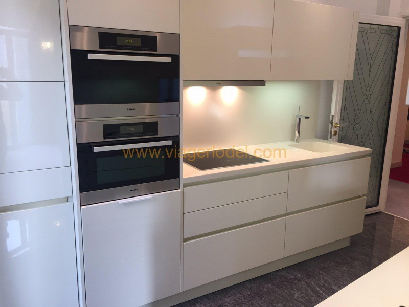 Life annuity apartment Nice 250000€ - Picture 7