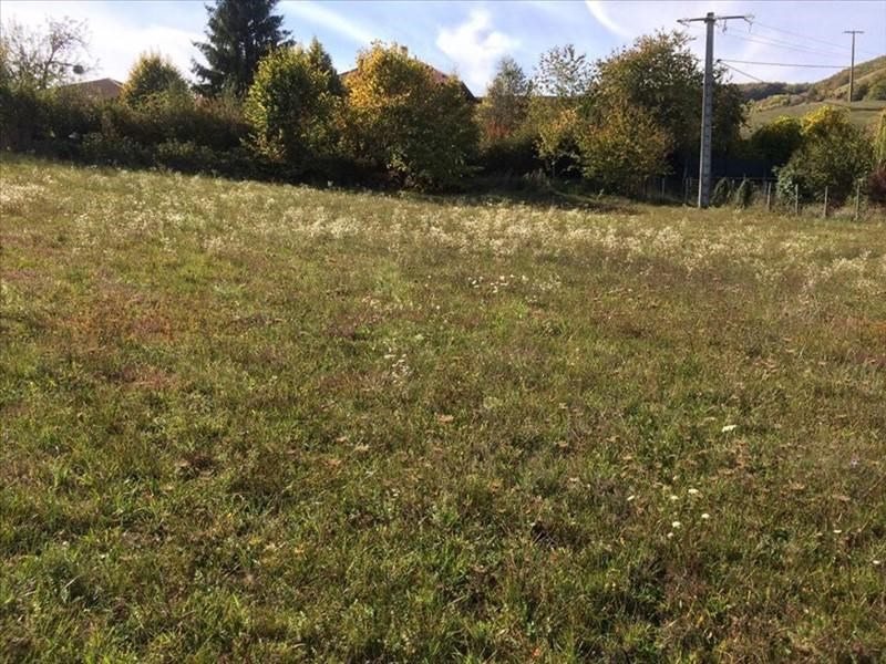 Vente terrain Chasselay 97 000€ - Photo 3